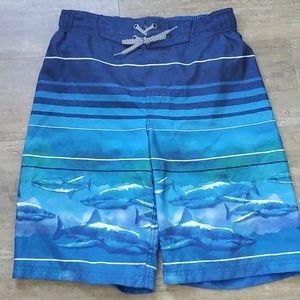Zeroxposur Boys Blue Shark 🦈 Swim Trunks